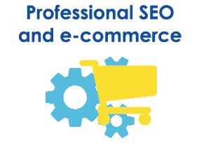 Professional SEO and e-commerce website
